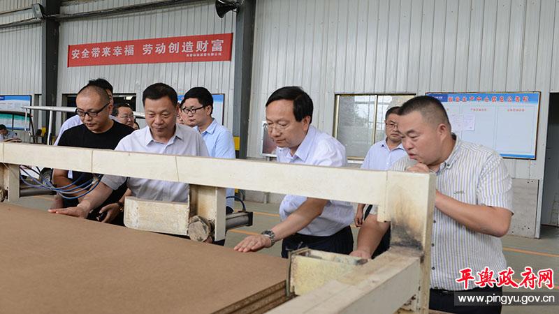 省委农办常务副主任申延平一行到平舆县调研乡村振兴和改善农村人居环境工作