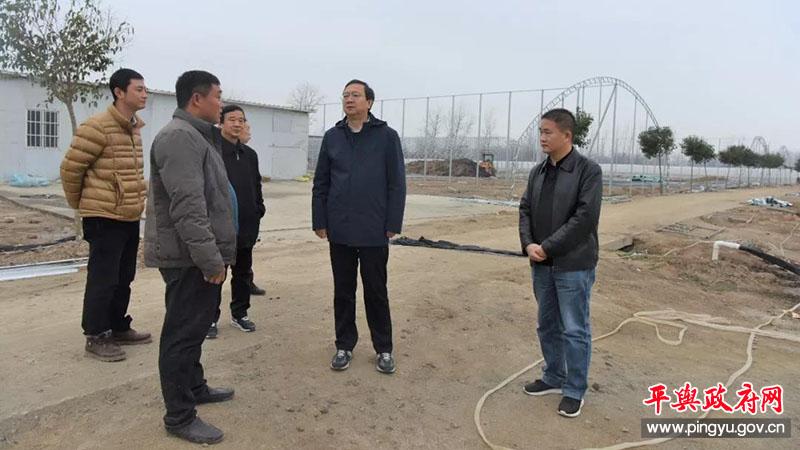 平舆县委副书记、县长赵峰到双庙乡调研脱贫攻坚工作