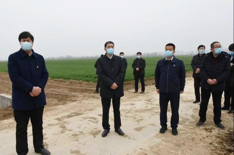 平舆县领导到各乡镇(街道)调研指导国土绿化工作