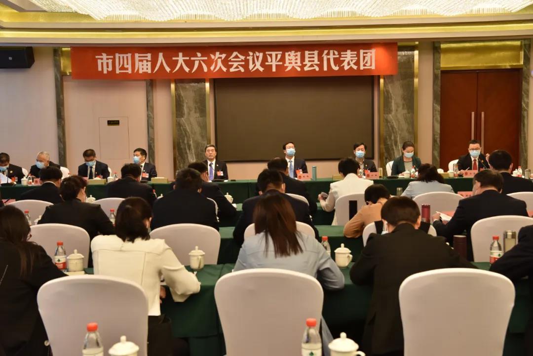 平舆县代表团审议市人大常委会工作报告和法检两院工作报告