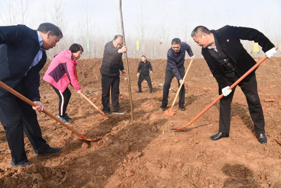 平舆县组织开展2020年冬季全民义务植树活动