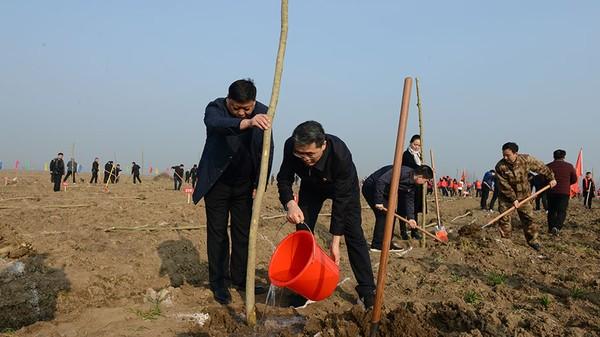 平輿縣組織開展2019年春季全民義務植樹活動